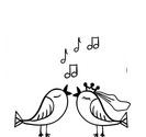 Свадьба на теплоходе Пальма де Сочи
